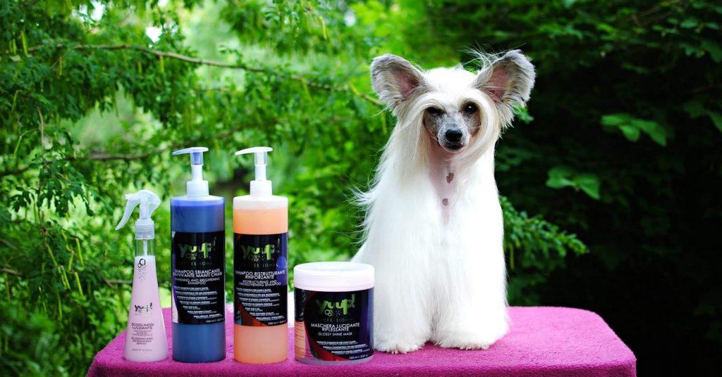 Koira ja Yuup-tuotteita